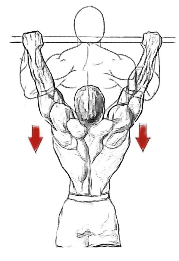 scoliosis workouts